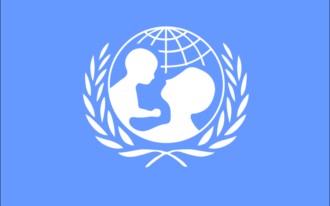 Who are UNICEF Ambassadors?