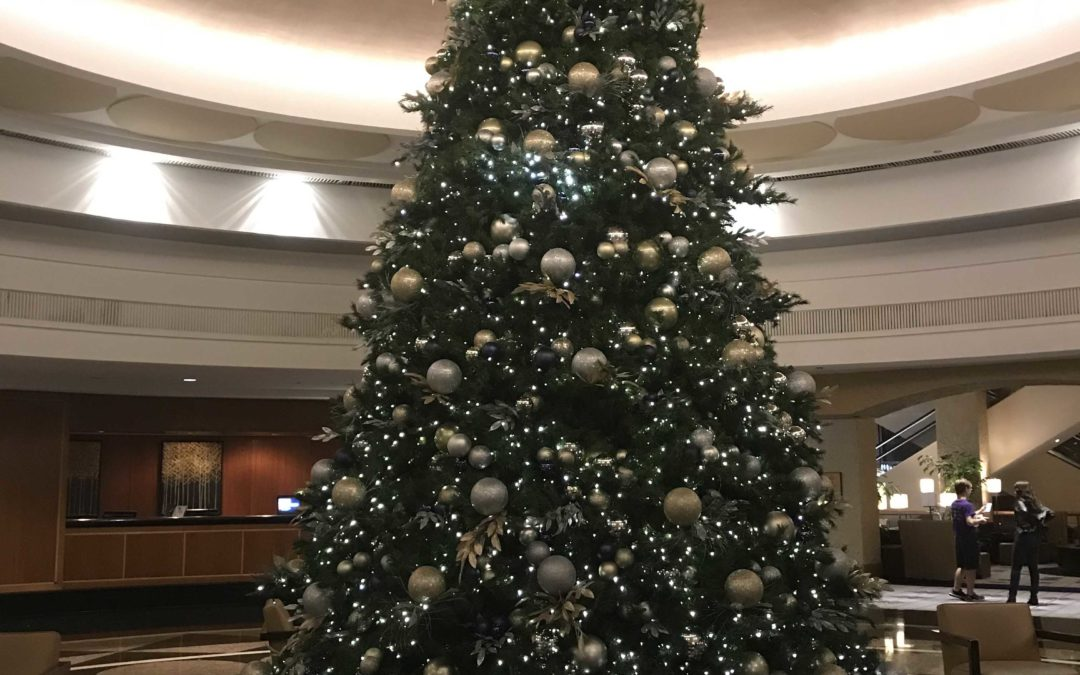 Letter to the Editor: Oh, Christmas Tree! I miss thee.